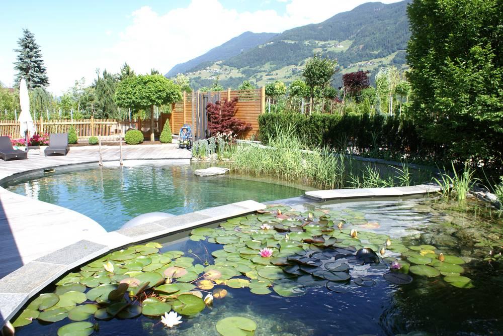 Planung gestaltung garten wammes for Gartengestaltung um den pool